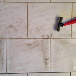 Micro Cleaner Dampf Reinigung Bodenplatten